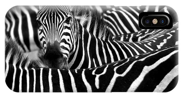East Africa iPhone Case - Close Up From A Zebra Surrounded With by Chantal De Bruijne