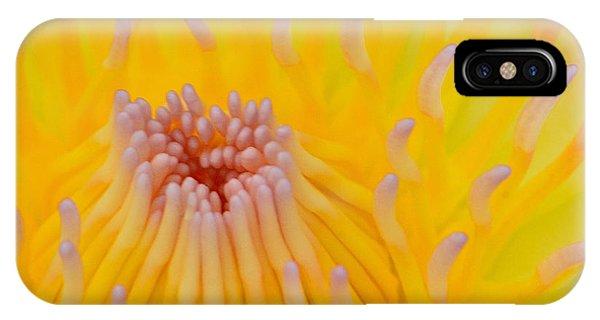 Aquatic Plants iPhone Case - Close Up Of Beautiful Yellow Water Lily by Panu Ruangjan