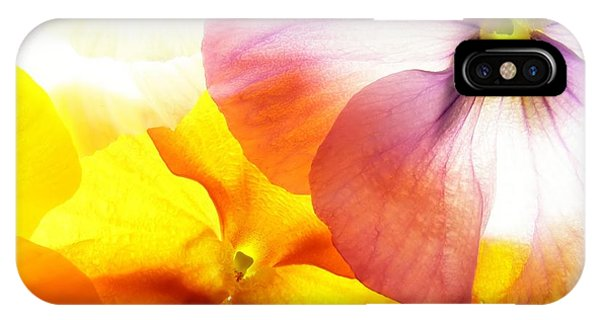 Blue Violet iPhone Case - Close-up Of Colourful Viola Tricolor by Anette Linnea Rasmussen