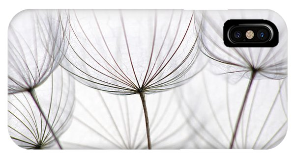 Night iPhone Case - Close-up Of Dandelion Seed With An by Anette Linnea Rasmussen