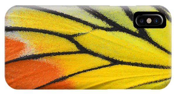 Botanical Garden iPhone Case - Close Up Of Painted Jezebel Butterflys by Super Prin