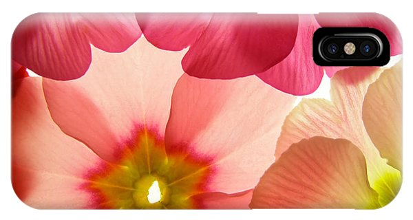 Botanical Garden iPhone Case - Close-up Of Primula Flower Against by Anette Linnea Rasmussen