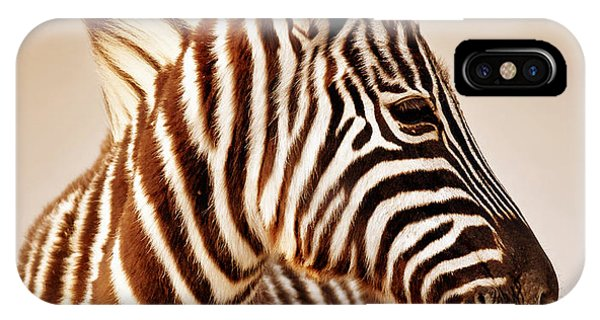 Mammal iPhone Case - Close-up Portrait Of A  Baby Zebra by Johan Swanepoel
