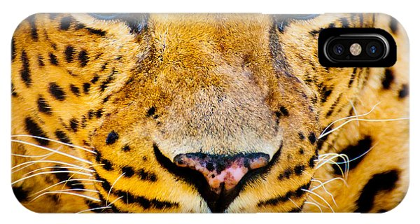 Adult iPhone Case - Close Up Portrait Of Leopard With by Rob Hainer