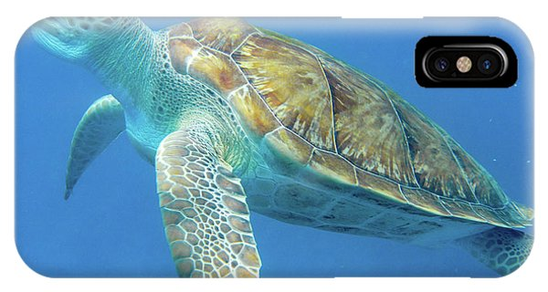 Close Up Sea Turtle IPhone Case