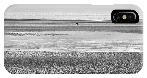 Coastal Brown Bear On  A Beach In Monochrome IPhone Case