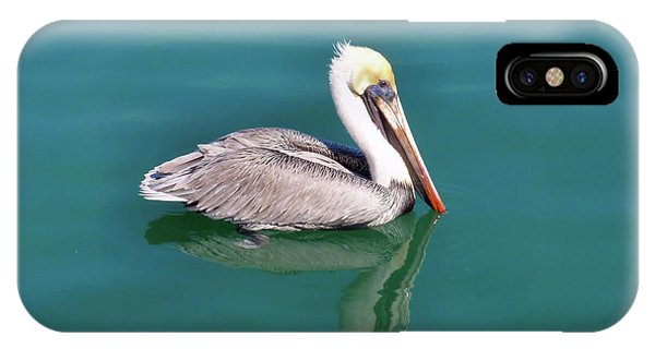 Coastal Cruiser IPhone Case