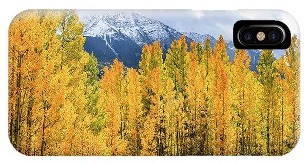 Colorado Aspens And Mountains 1 IPhone Case