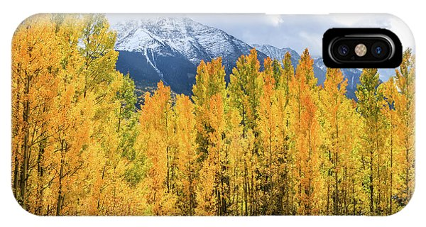 Colorado Aspens And Mountains 1 IPhone Case