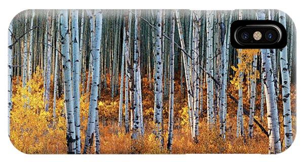 Colorado Autumn Wonder Panorama IPhone Case