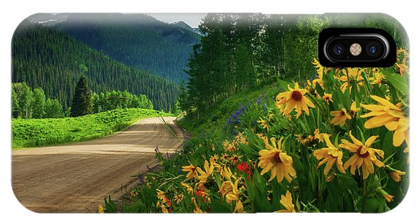 IPhone Case featuring the photograph Colorado Wildflowers by John De Bord