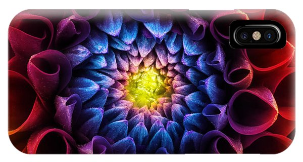 Blue Violet iPhone Case - Colorful Chrysanthemum Flower Macro by Triff