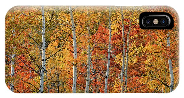 IPhone Case featuring the photograph Colorful Glow Of Autumn by Leland D Howard