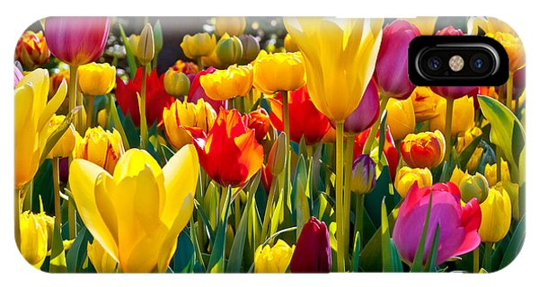 Object iPhone Case - Colorful Tulips In The Park. Spring by Artens