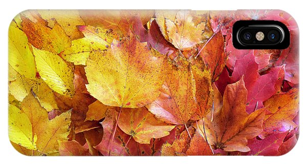 Colors Of Fall - Yellow To Red IPhone Case