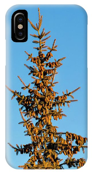 IPhone Case featuring the photograph Cones by Jon Burch Photography