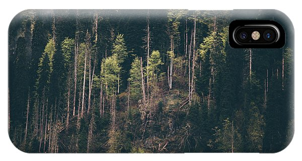Discovery iPhone Case - Coniferous Forest Tree Background Foggy by Everst