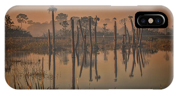 Cool Day At Viera Wetlands IPhone Case
