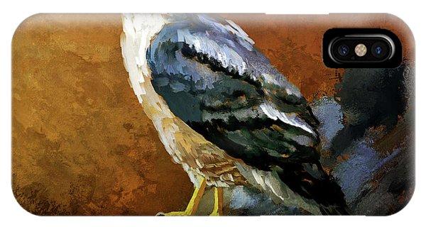 Avian iPhone Case - Cooper's Hawk by Lois Bryan