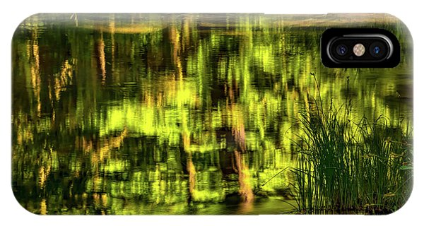 IPhone Case featuring the photograph Coquille Forest Reflections by Leland D Howard