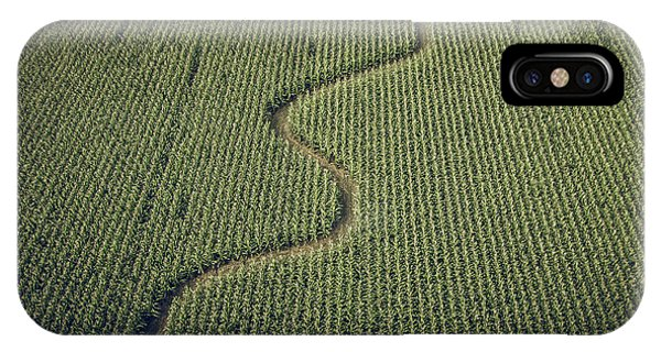 Corn Field IPhone Case