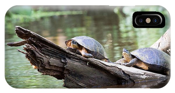 Central America iPhone Case - Costa Rica, Tortuguero National Park by Ronnybas Frimages