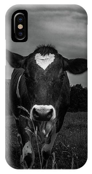 IPhone Case featuring the photograph Cow by Bob Orsillo
