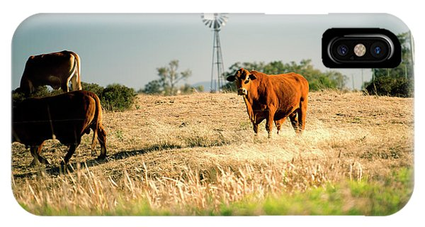 IPhone Case featuring the photograph Cows And A Windmill In The Countryside. by Rob D Imagery