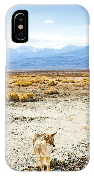 Death Valley iPhone Case - Coyote, Death Valley National Park by Richard Semik