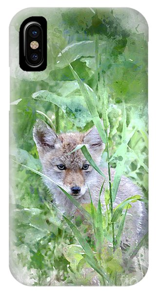 IPhone Case featuring the photograph Coyote Pup by Brad Allen Fine Art
