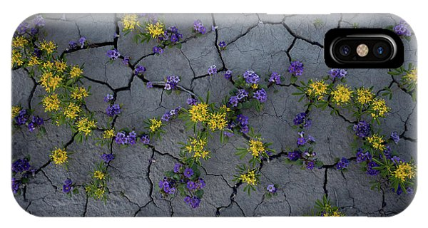 Cracked Blossoms IPhone Case