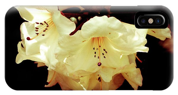 Creamy Rhododendron IPhone Case
