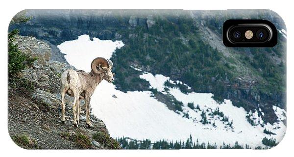 Rocky Mountain Bighorn Sheep iPhone Case - Crevace Ram by Todd Klassy