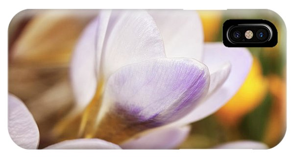IPhone Case featuring the photograph Crocus by Whitney Goodey