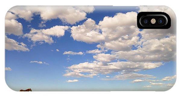 Cumulus IPhone Case
