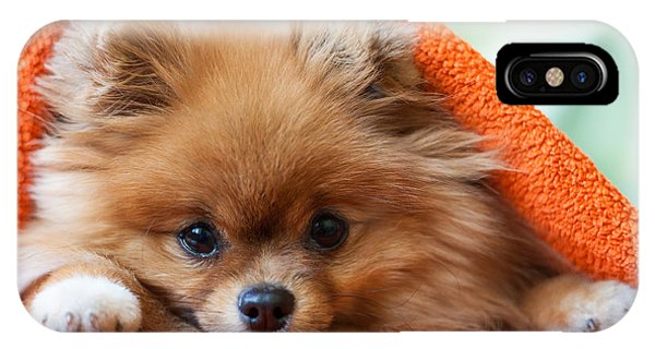 Small iPhone Case - Cute And Funny Puppy Pomeranian Smiling by Barinovalena