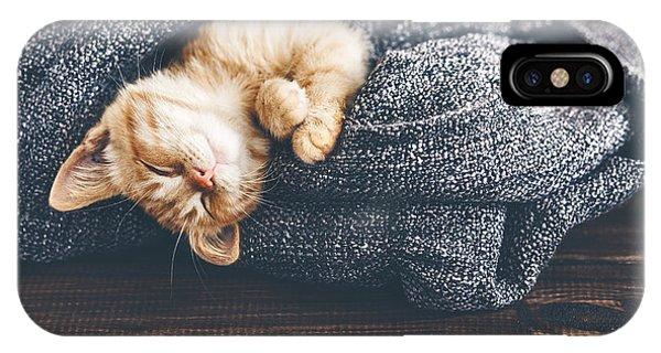 Cute Kitten iPhone Case - Cute Little Ginger Kitten Is Sleeping by Alena Ozerova