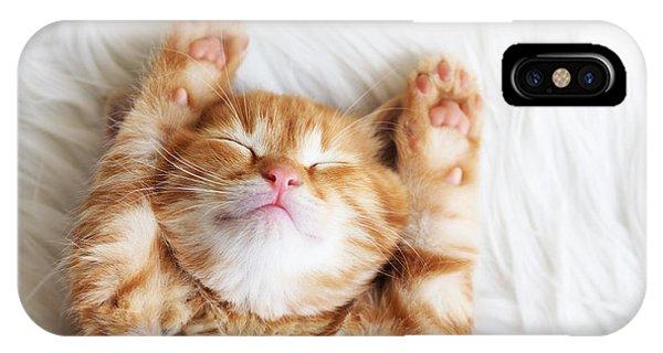 Cute Kitten iPhone Case - Cute Little Red Kitten Sleeps On Fur by Alena Ozerova