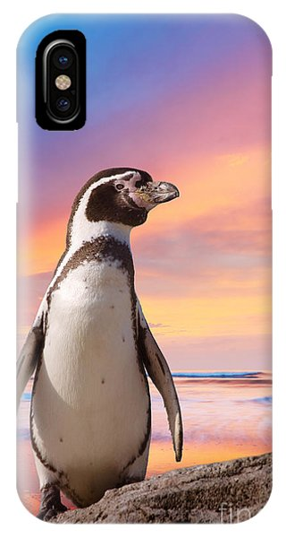 Alive iPhone Case - Cute Penguin With Sunset Background by Eric Gevaert