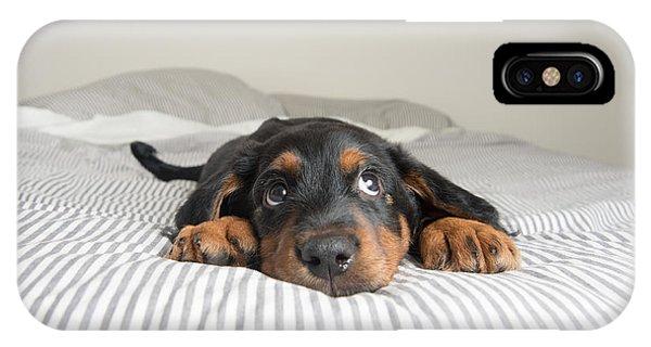 Small Dog iPhone Case - Cute Rottweiler Mix Puppy Sleeping On by Anna Hoychuk