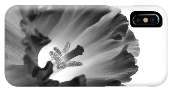 Daffodil Cornered IPhone Case