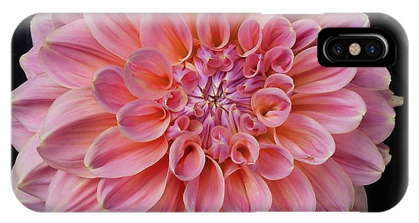 IPhone Case featuring the photograph Dahlia  by Ann Jacobson