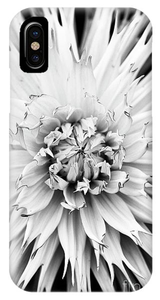 IPhone Case featuring the photograph Dahlia Normandie Frills Monochrome by Tim Gainey