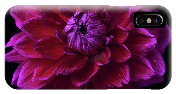 IPhone Case featuring the photograph Dahlia 'purplicious' by Ann Jacobson