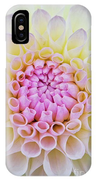 IPhone Case featuring the photograph Dahlia Ryecroft Brenda T Flower by Tim Gainey