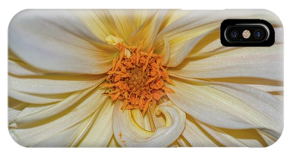 IPhone Case featuring the photograph Dahlia Summertime Beauty by Claire Turner