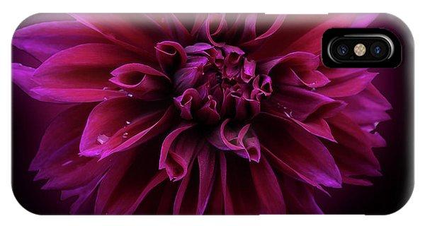 IPhone Case featuring the photograph Dahlia 'thomas Edison' by Ann Jacobson