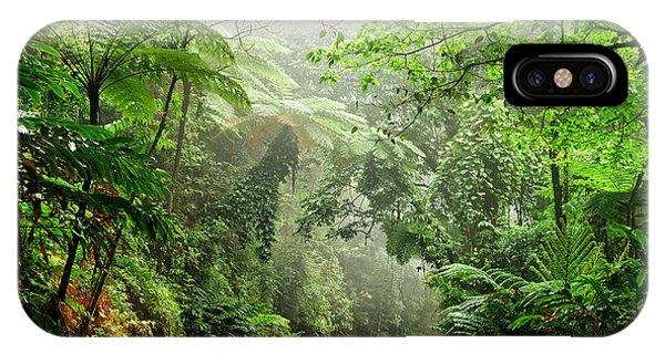 Lush iPhone Case - Daintree National Park, Queensland by Australiancamera