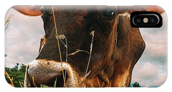 Uplift iPhone Case - Dairy Cow by Bob Orsillo