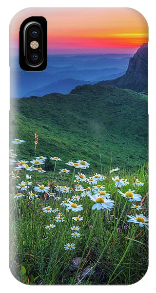 Daisies In The Mountain IPhone Case